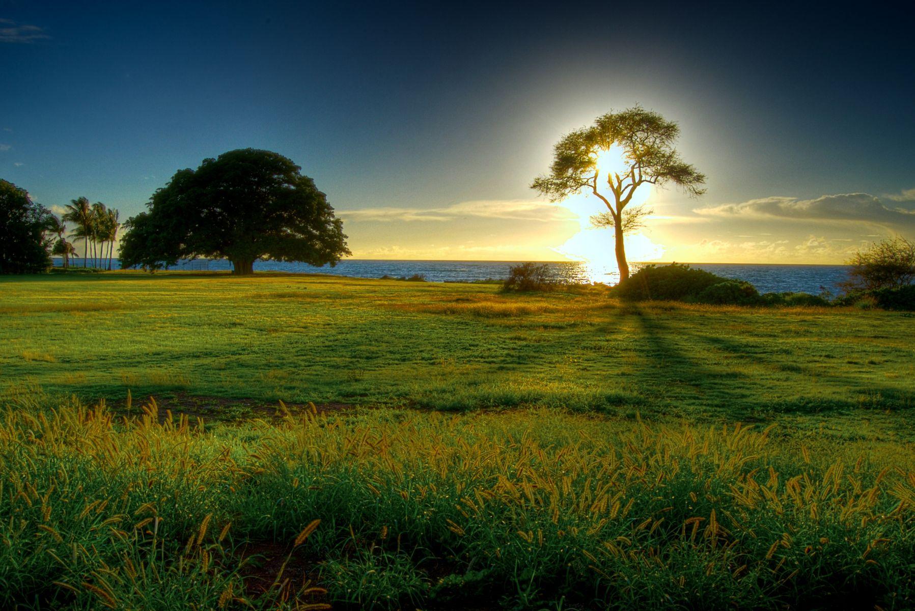 ONE-beautiful-sunrise