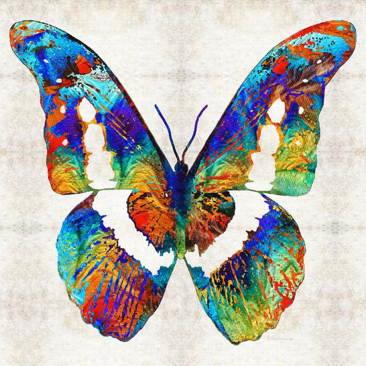 colorful-butterfly-art-by-sharon-cummings-sharon-cummings